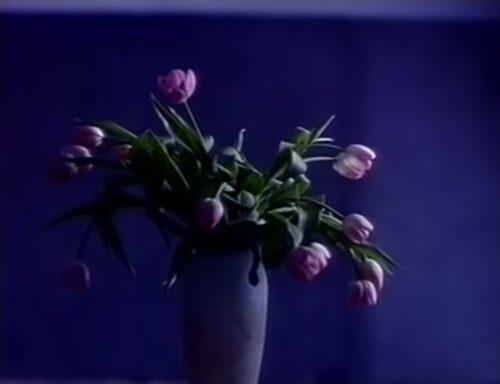 The Tower (1993) — Still 06